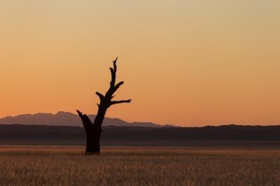 Namibië 2018